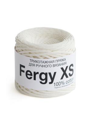Пряжа Fergy XS. Цвет: молочный