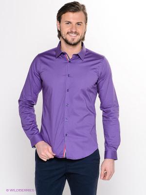 Рубашка Hazard. Цвет: фиолетовый