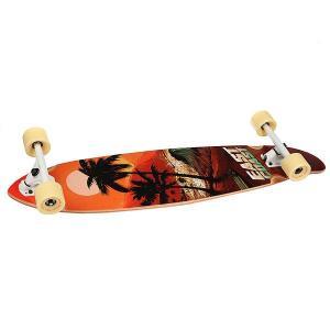 Лонгборд  Surf Paradise Multi 8.75 x 38 (96.5 см) Eastcoast. Цвет: мультиколор