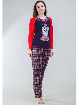 Домашний костюм-футболка с длинным рукавом и брюки NAGOTEX. Цвет: темно-синий, красный