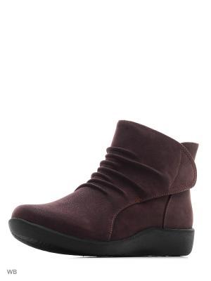 Ботинки Clarks. Цвет: фиолетовый