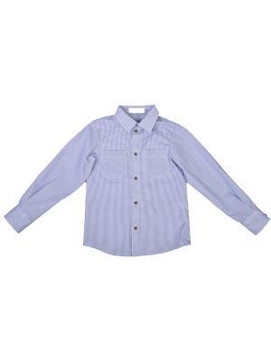 Рубашка Born. Цвет: белый, синий