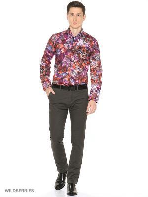 Рубашка Alex DANDY. Цвет: сливовый, лиловый, сиреневый, темно-фиолетовый, фиолетовый