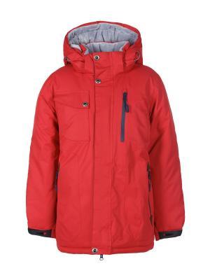 Куртки Arista. Цвет: бордовый