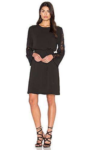 Платье с ажурными рукавами Bishop + Young. Цвет: черный