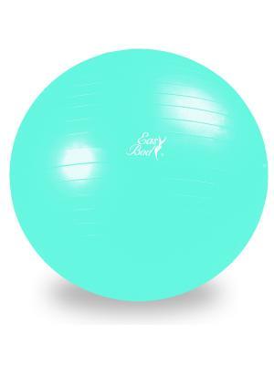 Мяч гимнастический 65 см Easy Body. Цвет: голубой