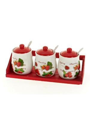 Набор банок для сыпучих продуктов Садовая ягода, Polystar. Цвет: красный