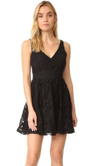 Кружевное платье Lanson BB Dakota. Цвет: голубой