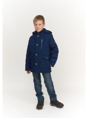 Куртка для мальчика AVESE. Цвет: синий
