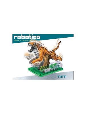 Научный опыт Тигр на батарейках, в коробке Amazing Toys. Цвет: зеленый, темно-зеленый, оранжевый