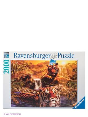 Паззл Тигры у водопада, 2000 шт Ravensburger. Цвет: коричневый