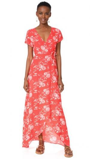 Платье Storm Knot Sisters. Цвет: клубничный цветочный рисунок