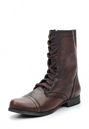 Ботинки Steve Madden. Цвет: коричневый
