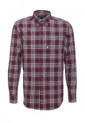 Рубашка Navigare. Цвет: красный
