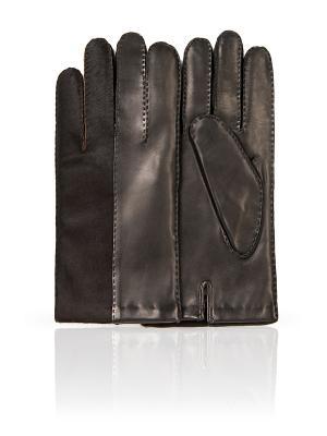Перчатки Dali Exclusive. Цвет: черный, коричневый