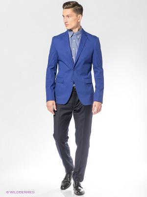 Пиджак BAZIONI. Цвет: синий