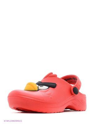 Шлепанцы ANGRY BIRDS. Цвет: красный