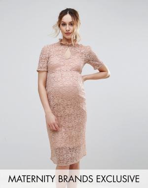 Hope and Ivy Maternity Кружевное платье-футляр &. Цвет: розовый