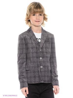 Пиджак PlayToday. Цвет: темно-фиолетовый, белый