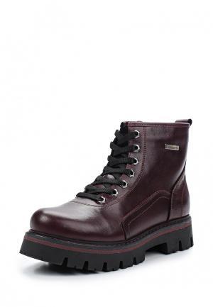 Ботинки Matt Nawill. Цвет: фиолетовый