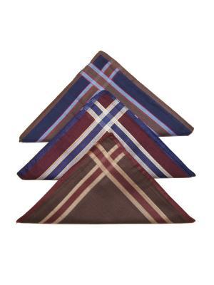 Носовой платок, 3 шт Lola. Цвет: темно-синий, бордовый, коричневый