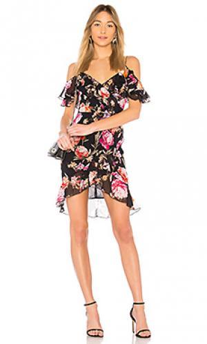 Мини платье lucile floral NICHOLAS. Цвет: синий