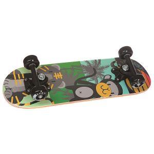 Скейтборд в сборе детский  Black Animals Multi 20 x 6 (15.2 см) Fun4U. Цвет: мультиколор