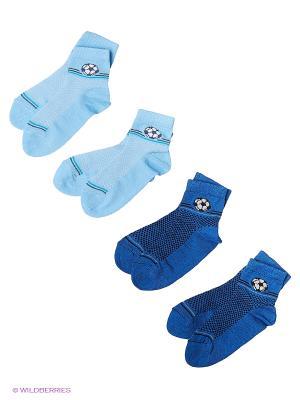 Носки, 4 пары Гамма. Цвет: синий, голубой