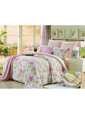 Комплект постельного белья, Каприс, Семейный KAZANOV.A.. Цвет: розовый