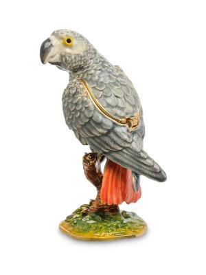 Шкатулка Попугай Art East. Цвет: серый