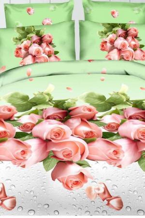 Постельное белье 1,5 сп 70х70 BegAl. Цвет: салатовый, розовый, серый