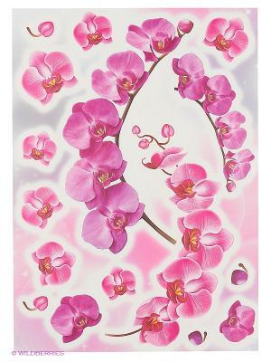 Веточка орхидеи DECORETTO. Цвет: сиреневый, розовый