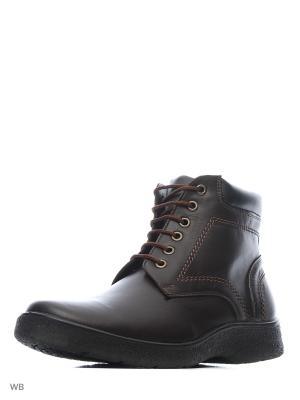 Ботинки BEKERANDMILLER. Цвет: темно-коричневый