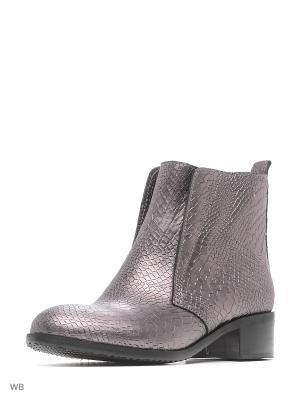 Ботинки ESTELLA. Цвет: серый, серебристый