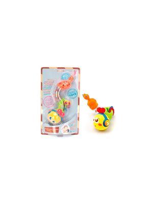 Игрушка развивающая для малышей Гусеничка HUILE. Цвет: желтый, синий, зеленый, красный