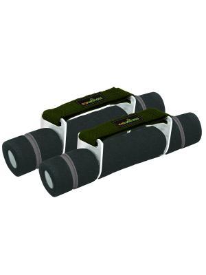 Гантели для аэробики покрытые неопреном 2x1 kg Ecowellness. Цвет: серый, зеленый