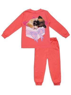 Пижама КОТМАРКОТ. Цвет: красный