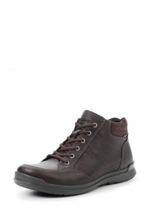 Ботинки HOWELL ECCO. Цвет: коричневый