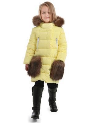 Пальто TOPKLAER. Цвет: светло-желтый