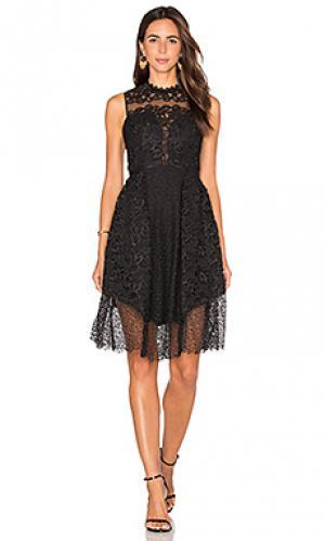 Мини платье sloan Three Floor. Цвет: черный