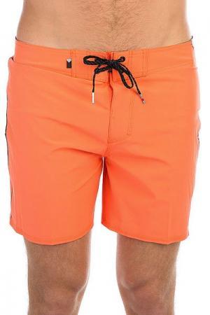 Шорты пляжные  Everydaykaima16 Nasturtium Quiksilver. Цвет: оранжевый