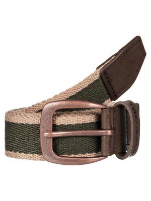 Ремни DC Shoes. Цвет: зеленый, серо-зеленый, хаки