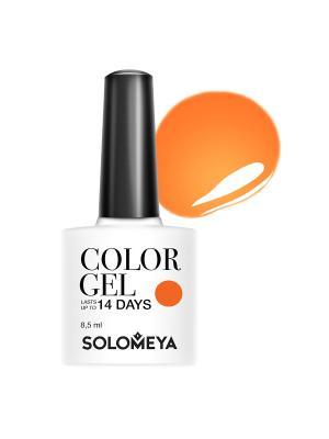 Гель-лак Color Gel Toucan SCGT033/Тукан SOLOMEYA. Цвет: оранжевый