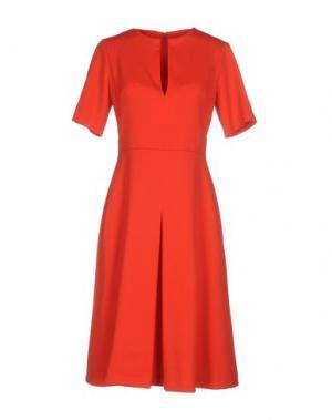 Платье до колена LAVINIATURRA. Цвет: красный