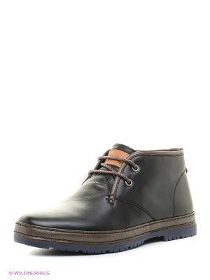 Ботинки Vitacci. Цвет: коричневый, черный