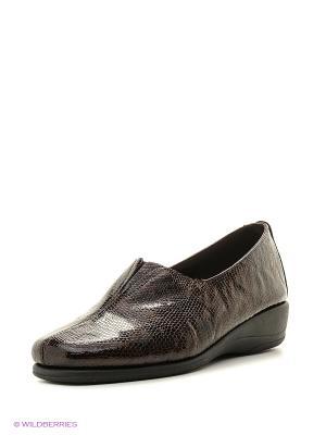Туфли Goergo. Цвет: темно-коричневый