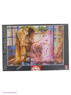 Пазл Розовая шаль, Винсент Ромеро,  2000 деталей Educa. Цвет: черный