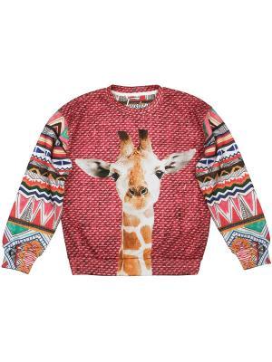 Свитшот Baby Giraffe FUSION. Цвет: бордовый, белый