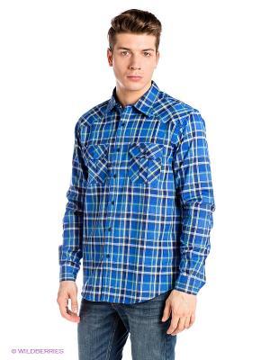 Рубашка Bergans. Цвет: синий, салатовый, белый