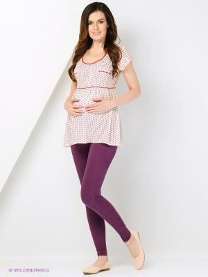 Леггинсы для беременных 40 недель. Цвет: темно-фиолетовый